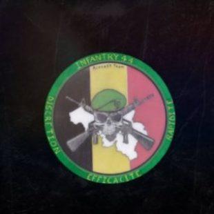 Infantry 44 : Opération SkyFall